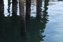 Dock Pilons Reflected In The W...