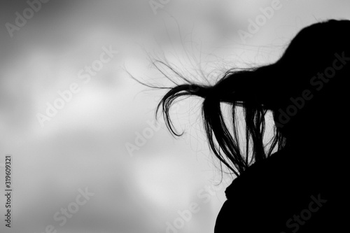 Silhouette Of Woman's Hair In Wind Canvas-taulu