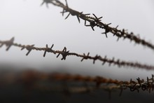 Low Angle View Of Barbed Wire Against Sky
