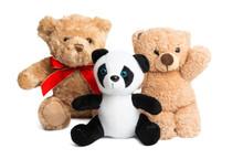 Soft Panda Bear Isolated