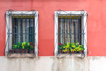 Window With Flowers And Bars ...