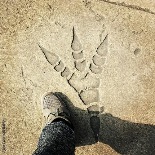 Fototapeta Low Section Of Man Standing By Dinosaur Footprint On Rock obraz