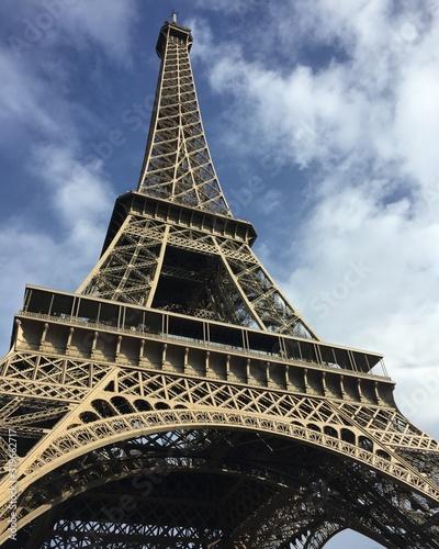 eiffel tower in paris #319662717