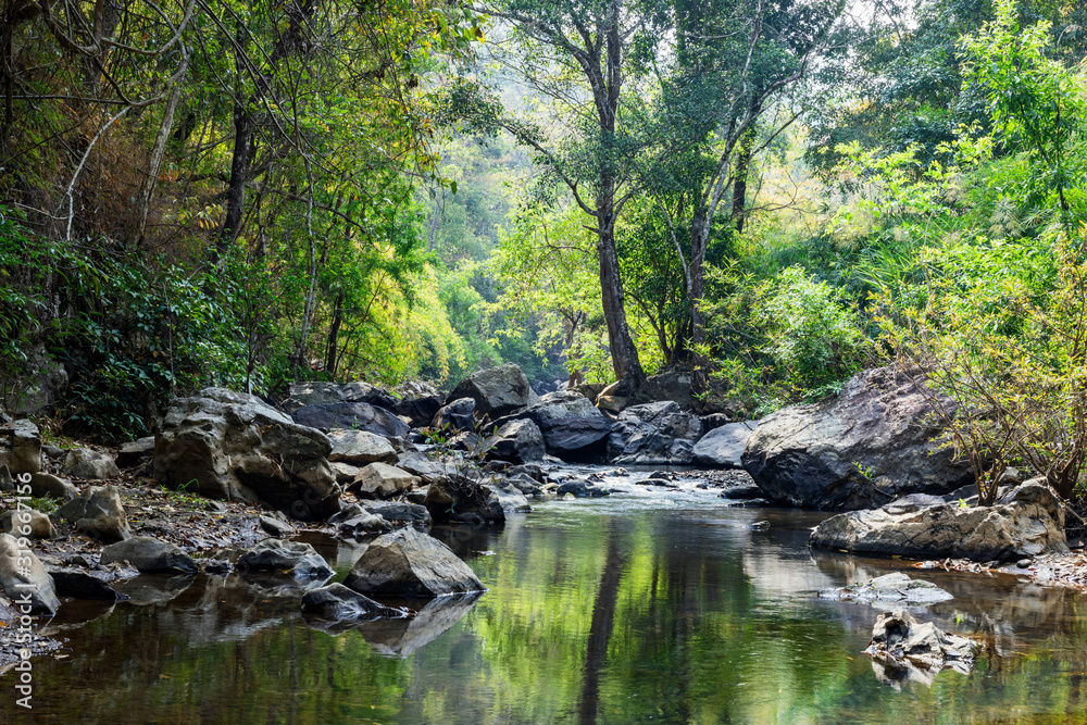 Fototapeta rocks in creek or stream flowing water