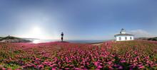 Pancha Island Light House Gali...