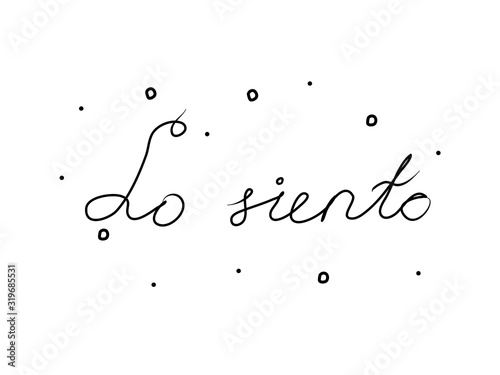 Lo siento phrase handwritten with a calligraphy brush Canvas Print