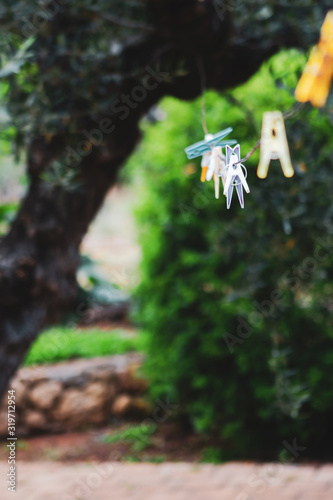clothes peg on laundry line in greek olive garden Canvas Print