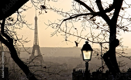 BARE TREES WITH EIFFEL TOWER IN BACKGROUND - fototapety na wymiar