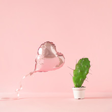 Heart Shaped Foil Balloon With Cactus Plant And Pink Background. Creative Love Or Valentine Concept.