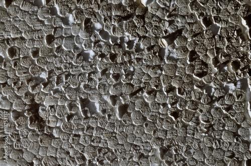 Fototapeta texture of old dirty shabby foam. obraz