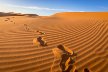 Footprints In The Sand, Sahara...