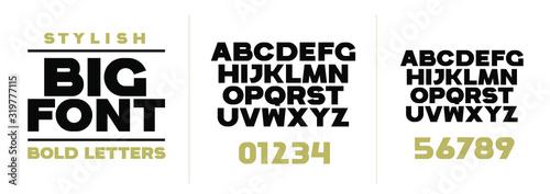Fotografía font vector illustration