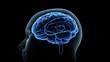 canvas print picture - Brain head human mental idea mind 3D illustration background