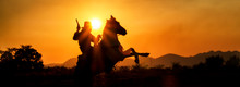 Silhouette Cowboy Riding Horseback In Farm At Sunset, Panorama Landscape