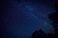 Milky Way And Stars And Tree C...
