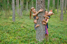 Children Hug Pine Tree In A Fo...