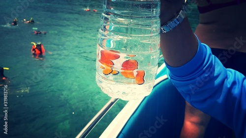 Fotografia, Obraz Close-Up Of Cropped Hand Holding Jar With Clownfish On Boat In Sea