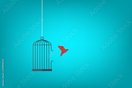 Fotografie, Obraz Flying bird and cage