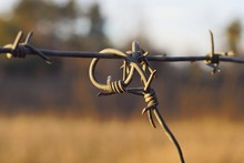 Part Of A Gray Iron Barbed Wir...