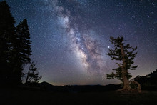 Milky Way Galaxy And Starry Ni...