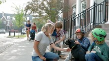 Woman And Boys Petting Dog On ...
