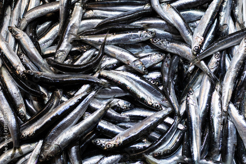 Photo Heap of small Mediterranean anchovy fish at market