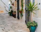 Fototapeta Na drzwi - narrow street in old town in Italy