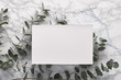 canvas print picture - Beautiful abstract floral background. Flat lay, top view eucalyptus on marble background, flat lay on light textured stone table surface. Minimal concept. Background decoration. Trendy decor.