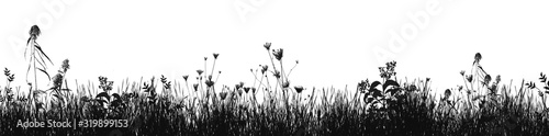 Obraz Grass natural silhouette as background - fototapety do salonu