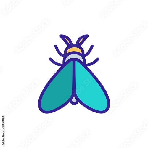 Obraz na plátně Moth icon vector
