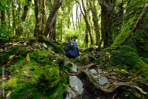 Fotografie, Obraz Treking for the incredible jurassic forest in New Zealand on the path up to the