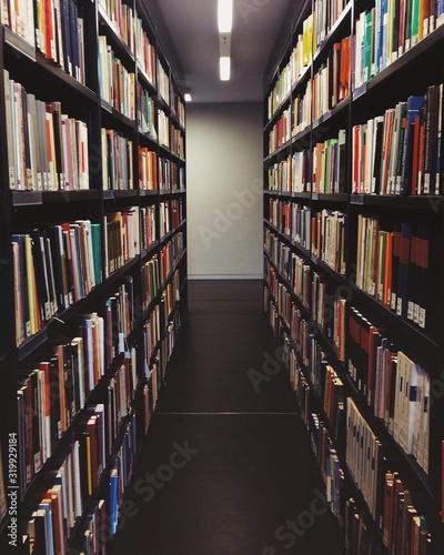 Carta da parati Books In Library