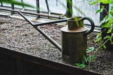 Old Watering Can On Planting Shelf At Greenhouse