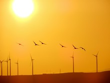 Low Angle View Of Windmills An...