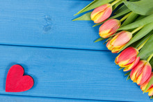 Tulips And Red Heart On Blue B...