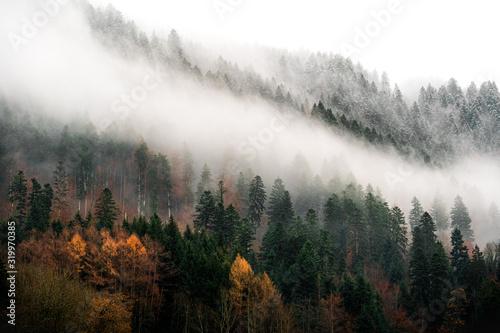Fotografie, Obraz quand l'automne croise l'hiver