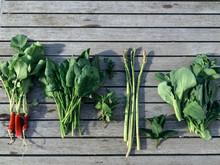 Directly Above Shot Of Vegetables On Boardwalk