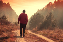 A Man Walks Along A Country Ro...