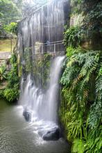 Waterfall In Kuala Lumpur Bird...