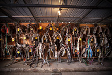 Leather Saddles Hanging Against Wall In Barn