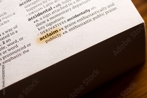 The word or phrase Acclaim in a dictionary. Wallpaper Mural