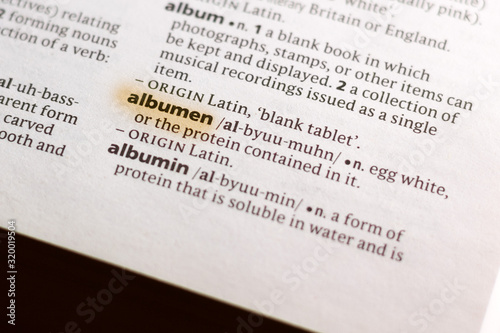 The word or phrase Albumen in a dictionary. Canvas Print