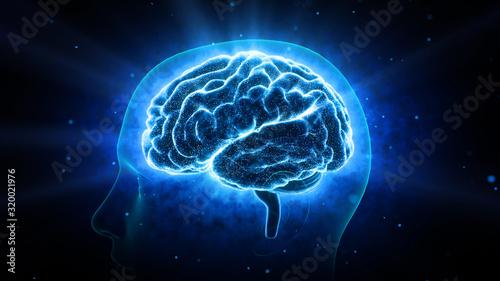 Obraz na plátně Brain head human mental idea mind 3D illustration background