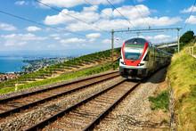 Train At Vineyard Terrace Of L...