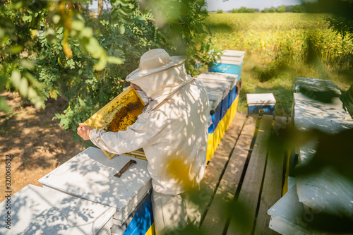 Beekeeper at work by the wooden bee hives. Apiculture concept. Wallpaper Mural