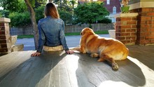 Rear View Of Woman Sitting With Labrador Retriever On Porch