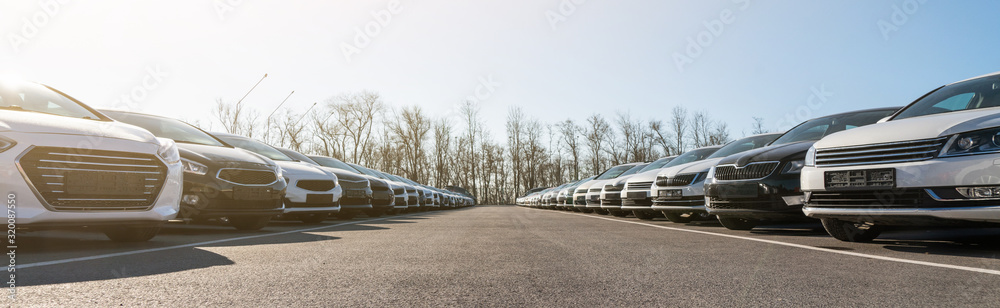 Fototapeta Cars in a row. Used car sales