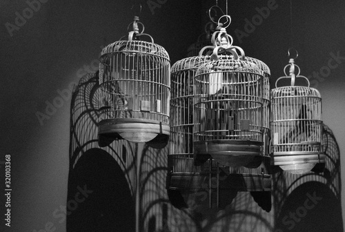 Tablou Canvas Low Angle View Of Empty Birdcages Hanging Against Wall