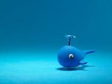 Blue Cute Whales
