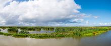 Panorama Of Marshland On Manma...